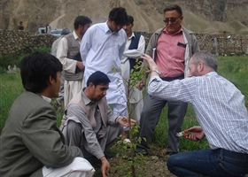 Workshop on pruning of young stonefruit, Afghanistan